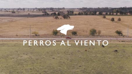 """""""Perros al viento"""", lo nuevo de Niña para Fiat y El Campito Refugio"""