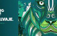 El Círculo Creativo anuncia a los ganadores de #YoungLionsMéxico2017