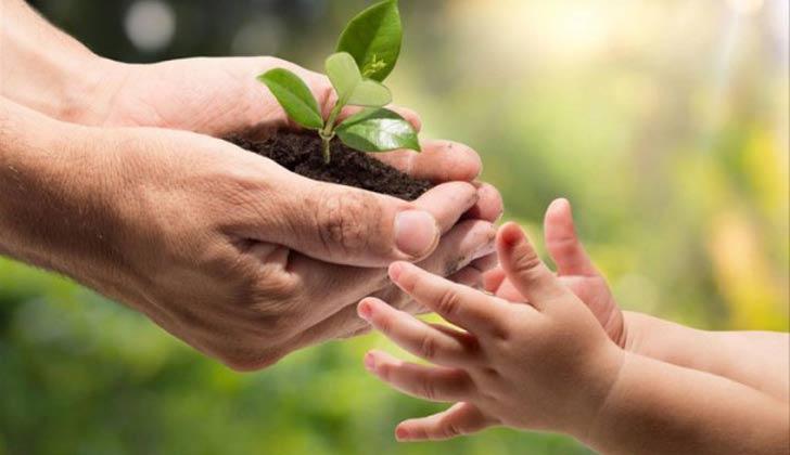 Día Mundial del Medio Ambiente: buenas intenciones y pocas acciones